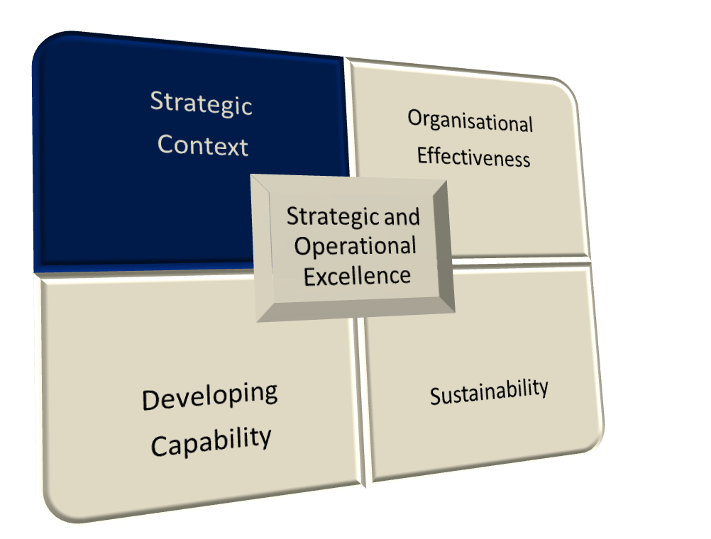 Strategic and Operational Excellence Model - Strategic Context