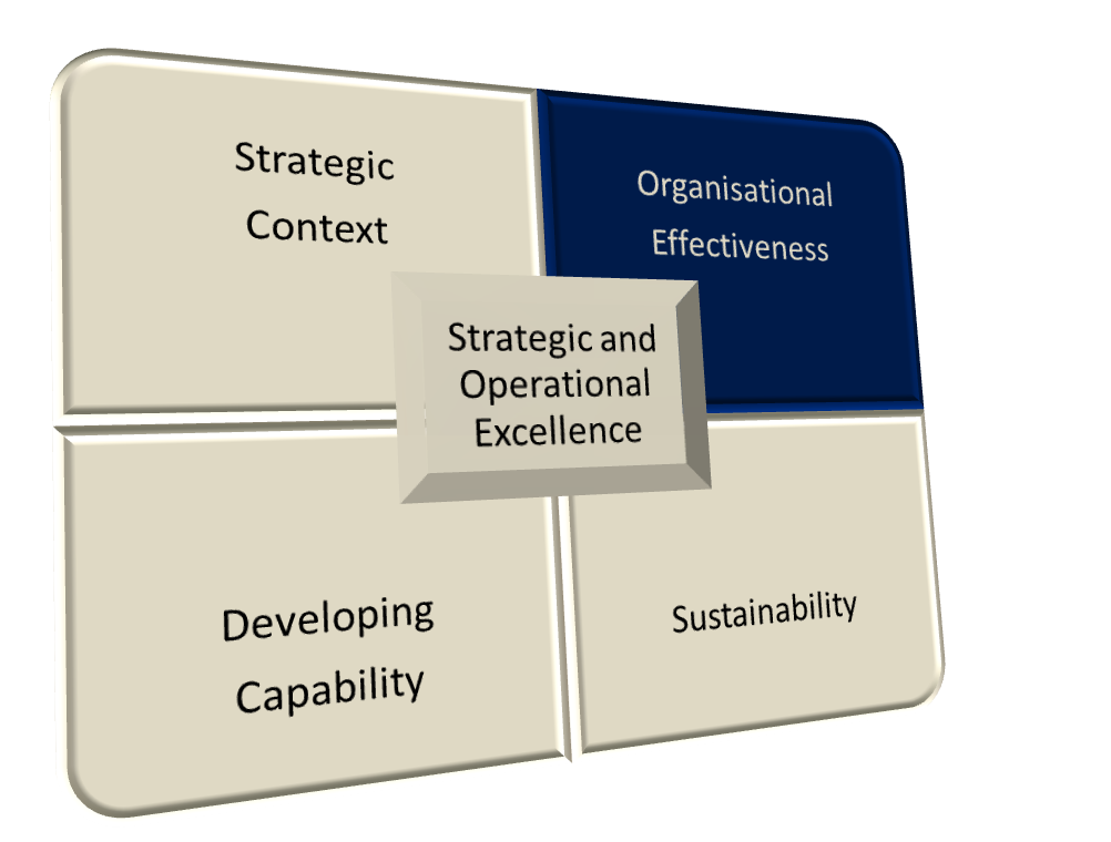 Strategic and Operational Excellence Model - Organisational Effectiveness