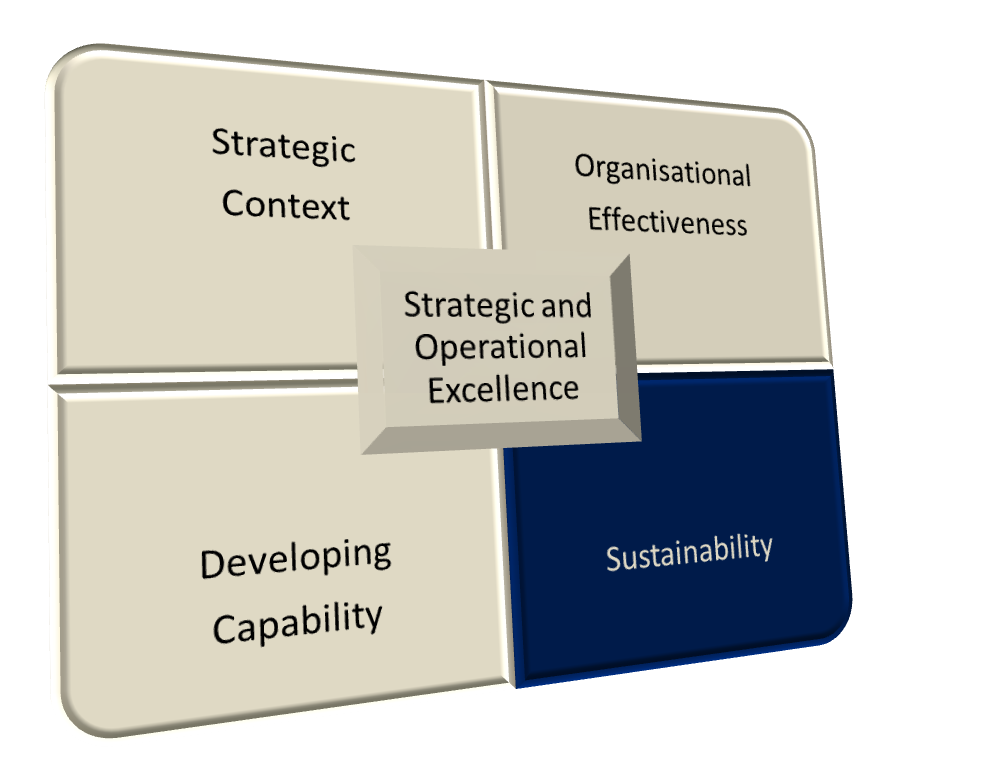 Strategic and Operation Excellence - Sustainability