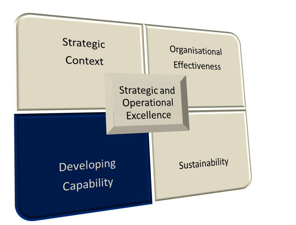 Strategic and Operational Excellence - Developing Capability