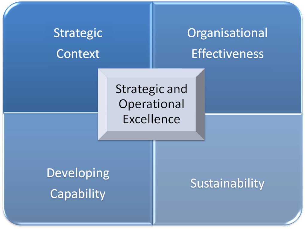 Strategic & Operational Exellence